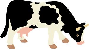 ベジタリアンのための代用品(乳製品の代用品)